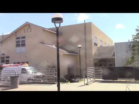 Cliff Swallows at Pajaro Valley High School, Watsonville, Update 5/23/18
