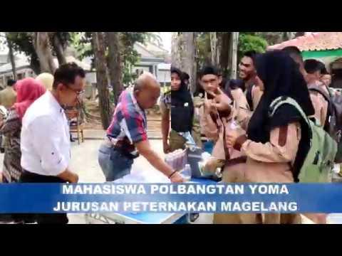 Mahasiswa Polbangtan YoMa Siap Menjadi Agripreneurship&Job Creator Dalam Pembelajaran  Kewirausahaan