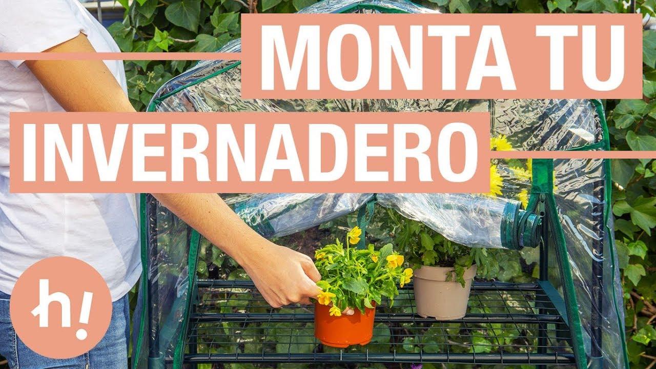 C Mo Montar Un Invernadero En Casa Para Proteger Las