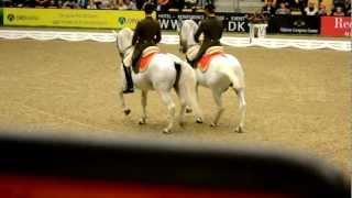 Spanish Riding School / Den Spanske Rideskole / Spanische Hofreitschule - JBK 2012 | Part 1