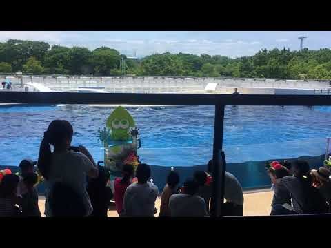 Suizokukaan - Splatoon themed event at the Kyoto Aquariam