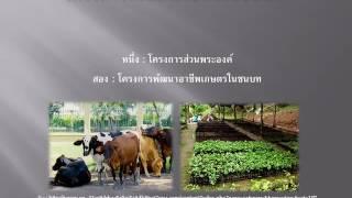 #รัชกาลที่๙ โครงการพัฒนาเกษตรในชนบท