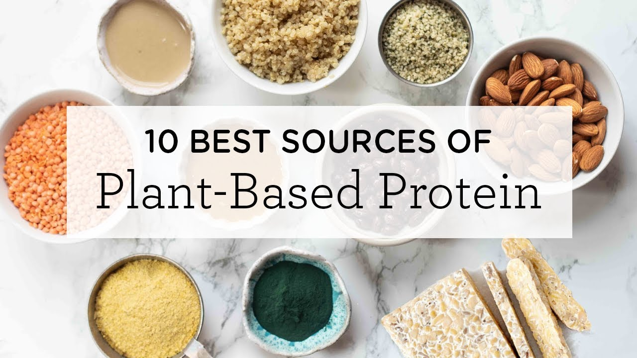 10 BEST Plant-Based Protein Sources (+ a FREE printable!)