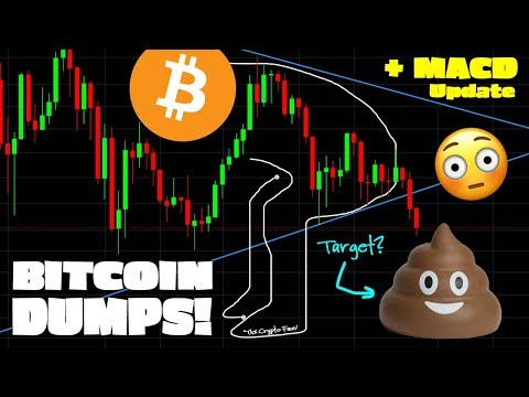 BITCOIN PRICE DROP TODAY - Where Support? (plus MACD Update!)