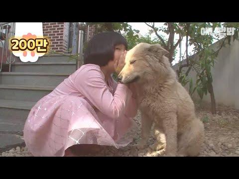 현실판 옥자 꼬마와 강아지