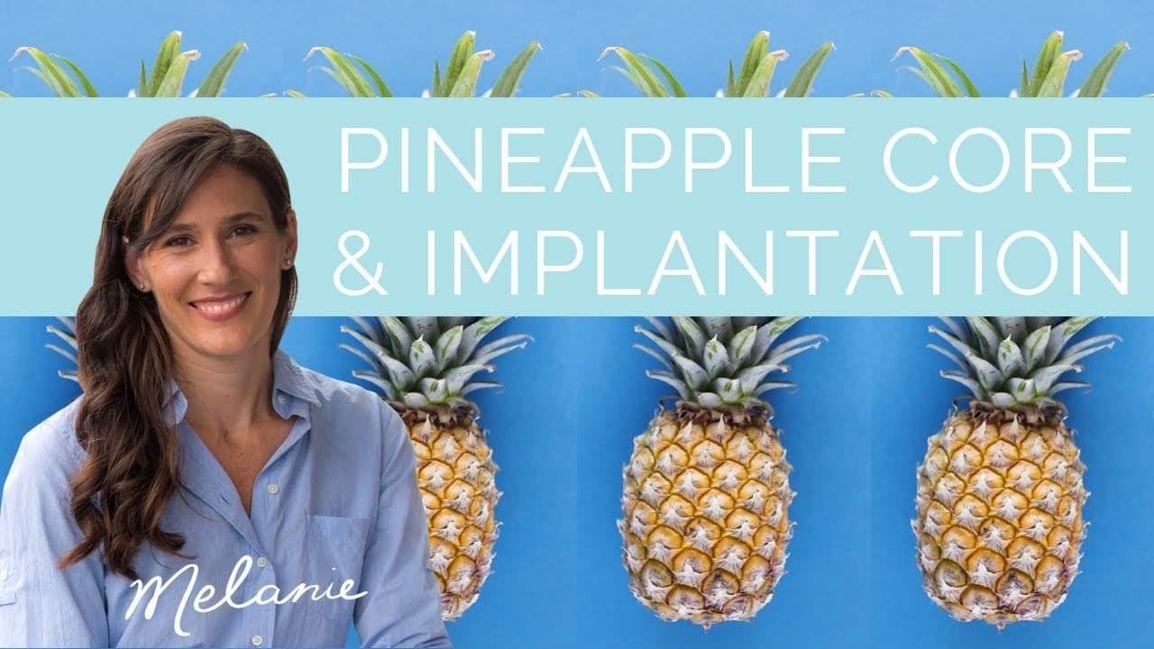 Will eating pineapple core improve implantation?   Nourish with Melanie #41
