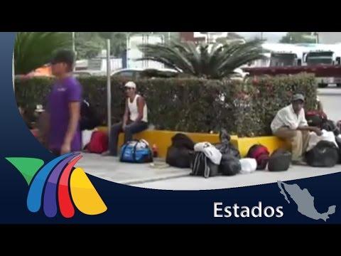 Jornaleros viven pesadilla en campo de cultivo de Coahuila | Noticias de Hidalgo