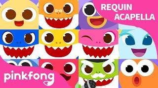 Requin A Capella | Chanter avec Bébé Requin | Pinkfong, Bébé Requin ! Chansons pour Enfants