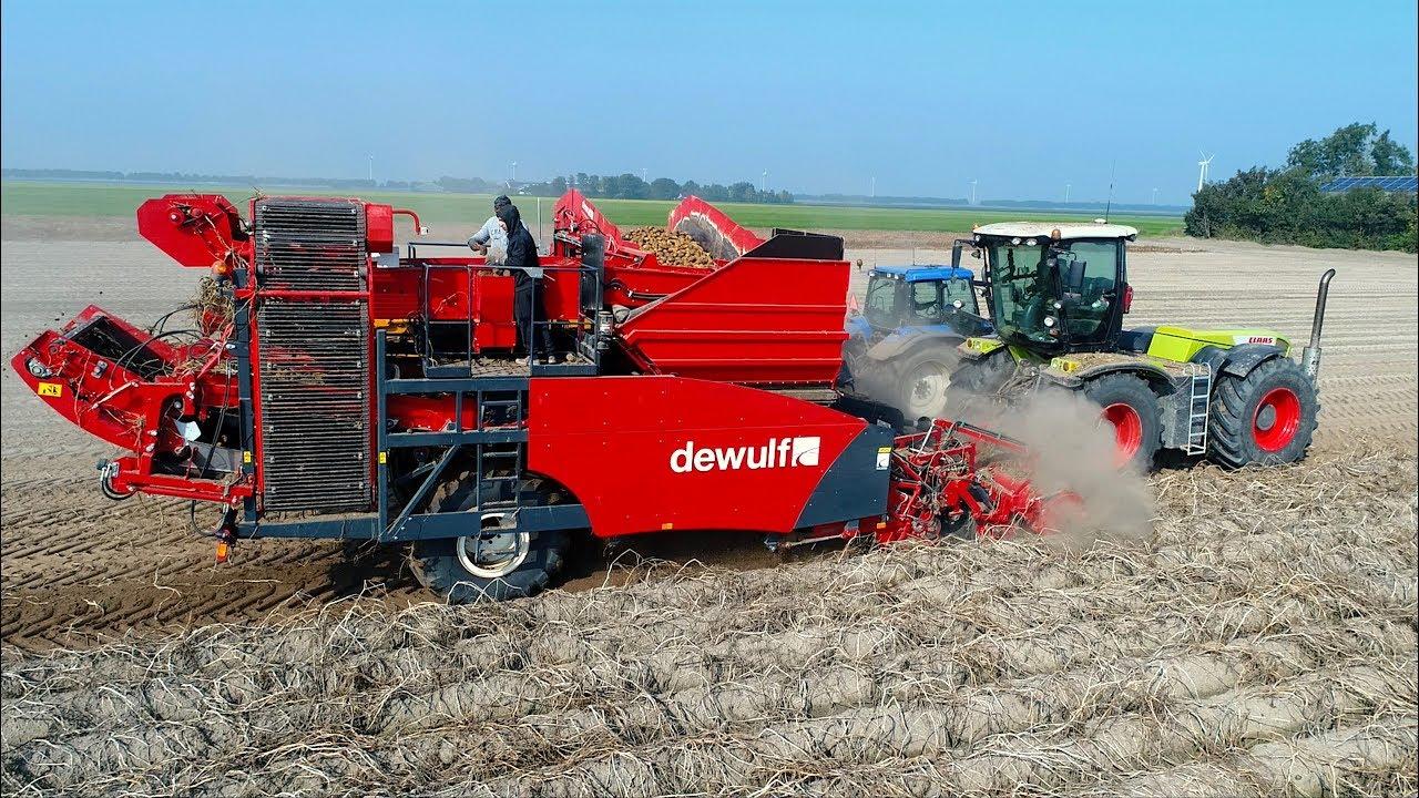 Potato Harvest Claas Xerion 3300 Vc Dewulf Ra2060 Trailed 2 Row Sieving Harvester De Visser