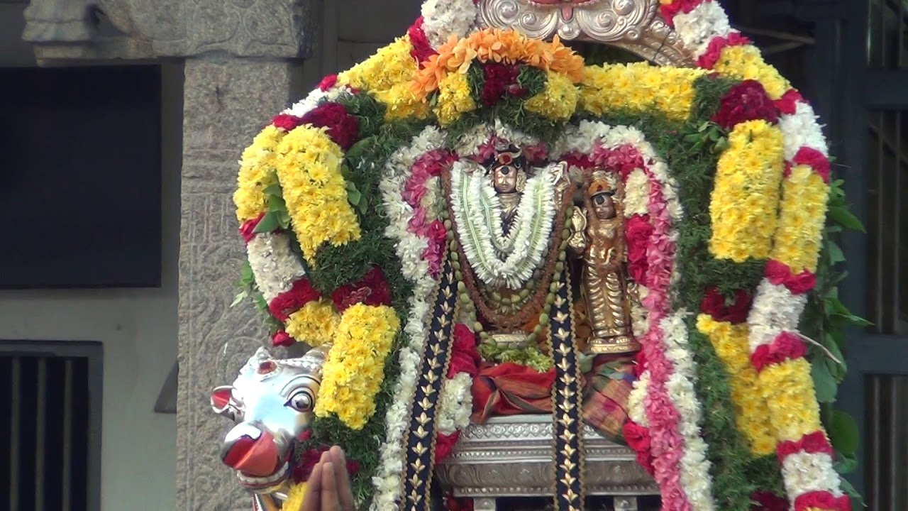Sri Karpagamba Kapali Avani Velli 2018 Pradosham by Mylapore Mylapore