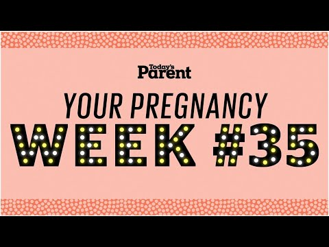 Your pregnancy: 35 weeks