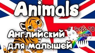 Учим Английский с Зебра ТВ. Животные.