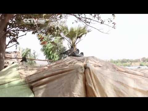 Mali Sand Divers