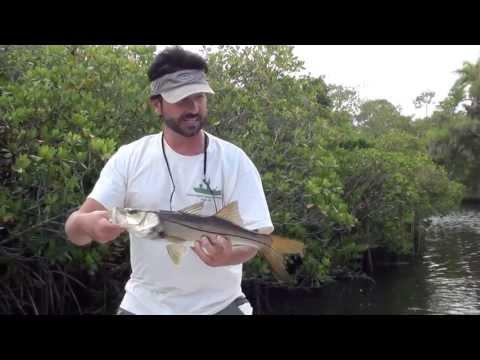 Loxahatchee River Fishing & Canoeing