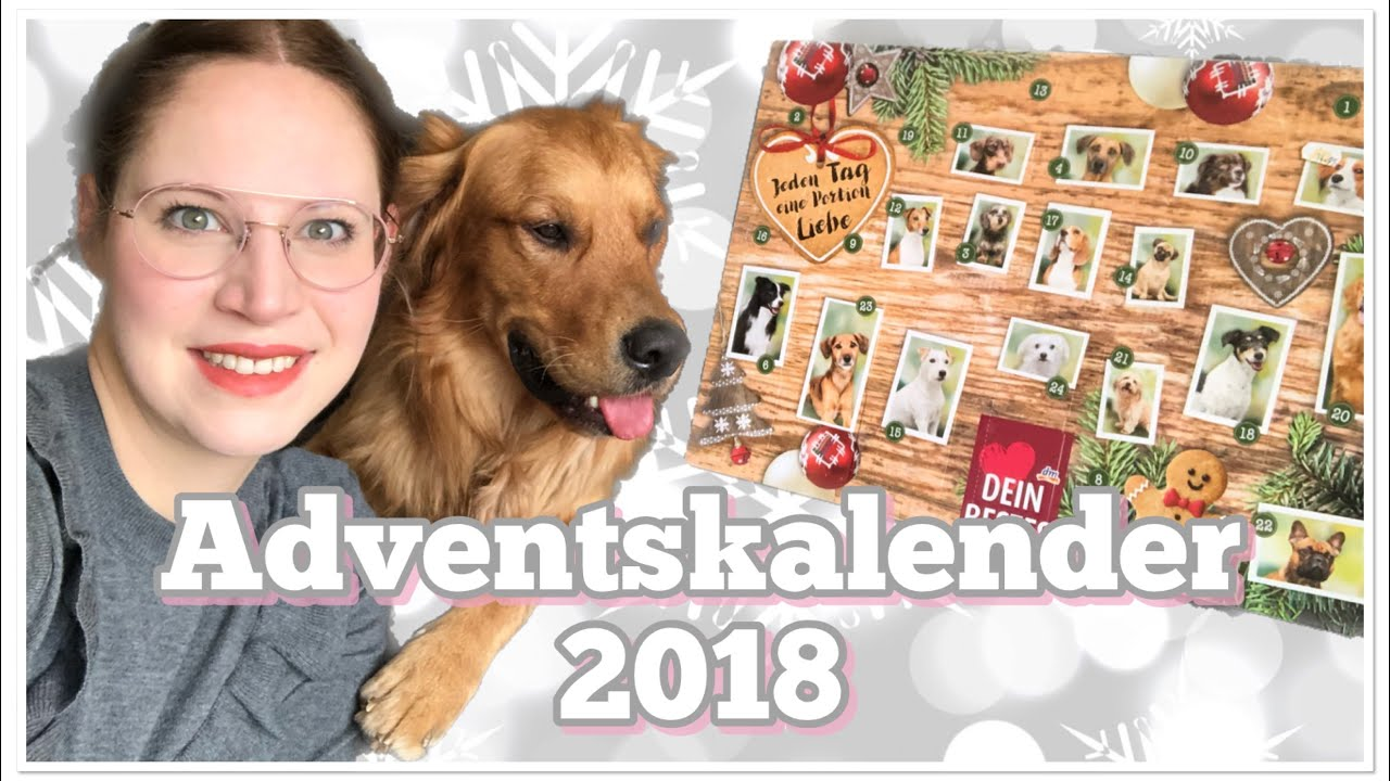 Weihnachtskalender Für Hunde.Dm Adventskalender Dein Bestes 2018 Hundeadventskalender