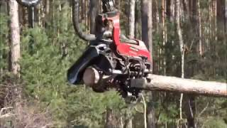 Prace leśne-Komatsu 931