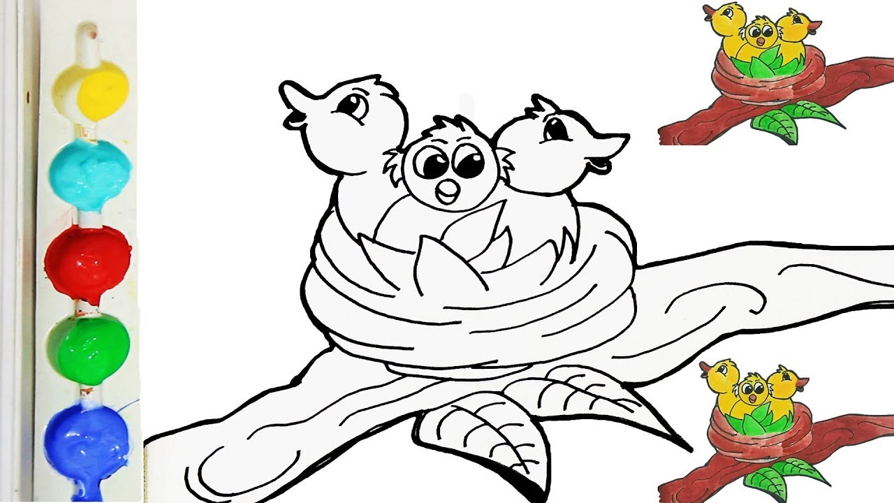 Drawing And Coloring Young Bird Nest For Kids Coloring Page For Kids