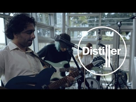 FEWS - The Zoo | Live From The Distillery