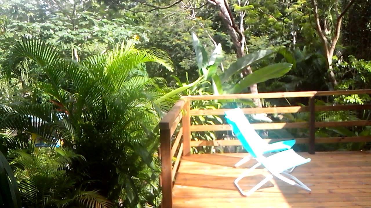 au jardin des colibris deshaies guadeloupe gite de