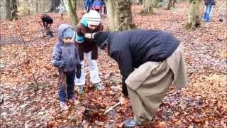 Tree Plant Day - Worsley Woods - AMYA Manchester North