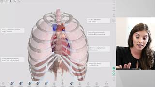 New Features of Complete Anatomy 2018 | Live
