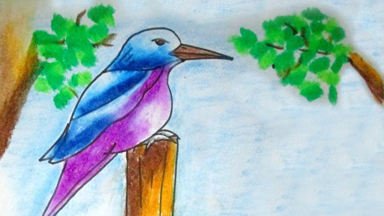 How To Draw Kingfisher Bird Step By Step Very Easy Simple Youtube