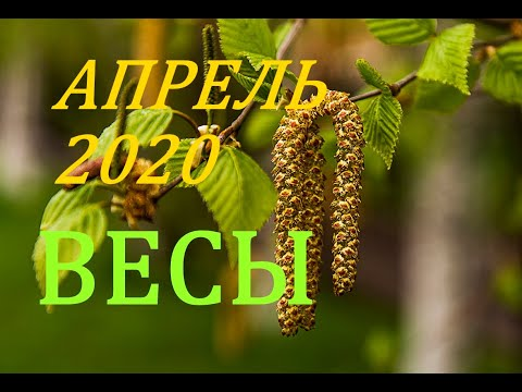 ВЕСЫ. АПРЕЛЬ 2020г. ПРОГНОЗ. САМОЕ ВАЖНОЕ ДЛЯ ВАС !!!