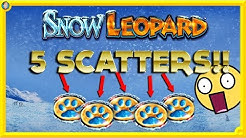 BIGGGGG !!! ULTRA RARE 5 SCATTERS on SNOW LEOPARD SLOT !!! 🐆
