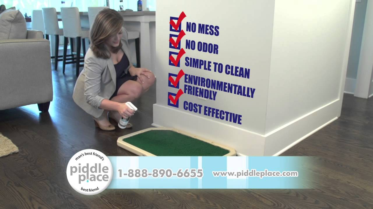 Best indoor dog toilet from Piddle Place - YouTube