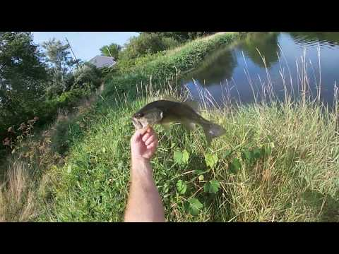 Freshwater Fishing Rhode Island For (Small) Largemouth Bass