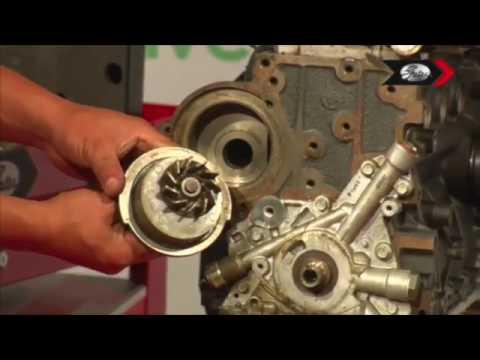 Chevrolet Aveo Cambio De Correa De Distribucin Youtube