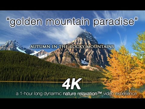 "Pure Nature in 4K: ""Golden Mountain Paradise"" 1 HR Autumn Nature Relaxation Video"