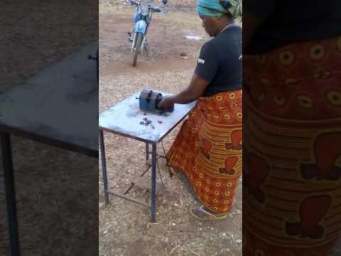 Local cashew processing in ruangwa TANZANIA
