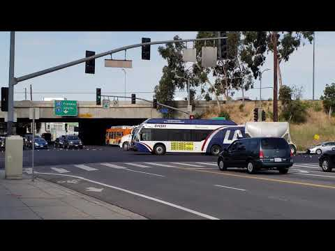 LADOT Dash Bus Route Lincoln Heights / Chinatown At Daly Street