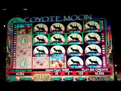 Coyote moon casino game casinos online free bonus
