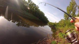 #8 Необычные случаи на рыбалке!