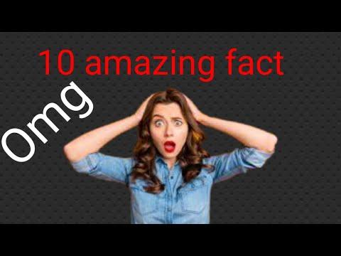 Duniya Ke 10 Rochak Tathya। 10 Amazing Facts In The Worlds.