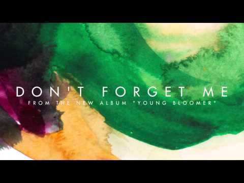 Valise - Don't Forget Me (Audio)