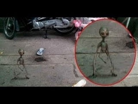 Shocking Documentary Extraterrestrial Life Reality Best Alien Sightings 2016 new
