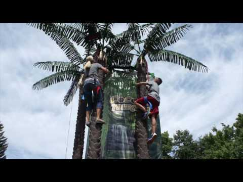Coconut Tree Climb - Climbing Attraction