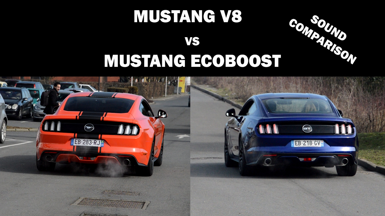 Mustang Ecoboost Vs V8 Sound Comparison