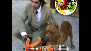Vybz Kartel - Mi Remember [Kingston Story Album] June 2011 ©