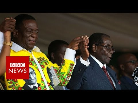 Zimbabwe crisis: Who's the 'crocodile'? - BBC News