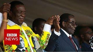 Zimbabwe crisis: Who's the 'crocodile'? - BBC News