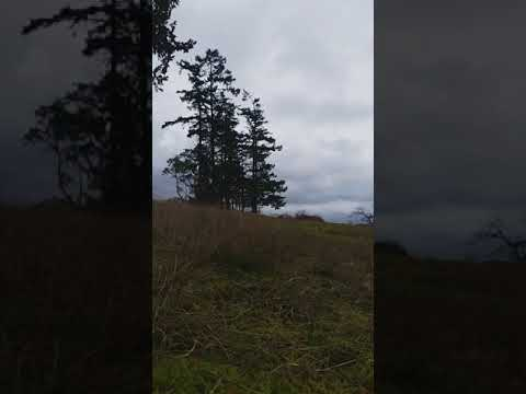 Guided Mindfulness - Smell - Friday Harbor