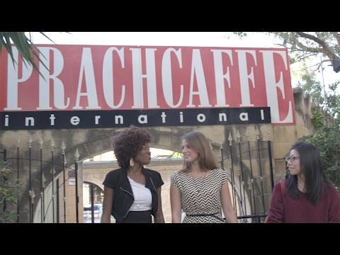 Sprachcaffe Malta - Adult Programmes