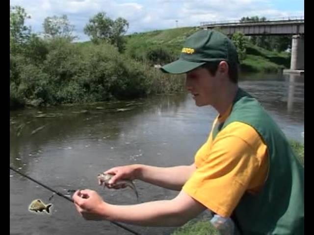 Ловля голавля на малых реках