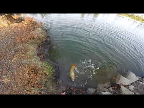 Santa Rosa Fishing