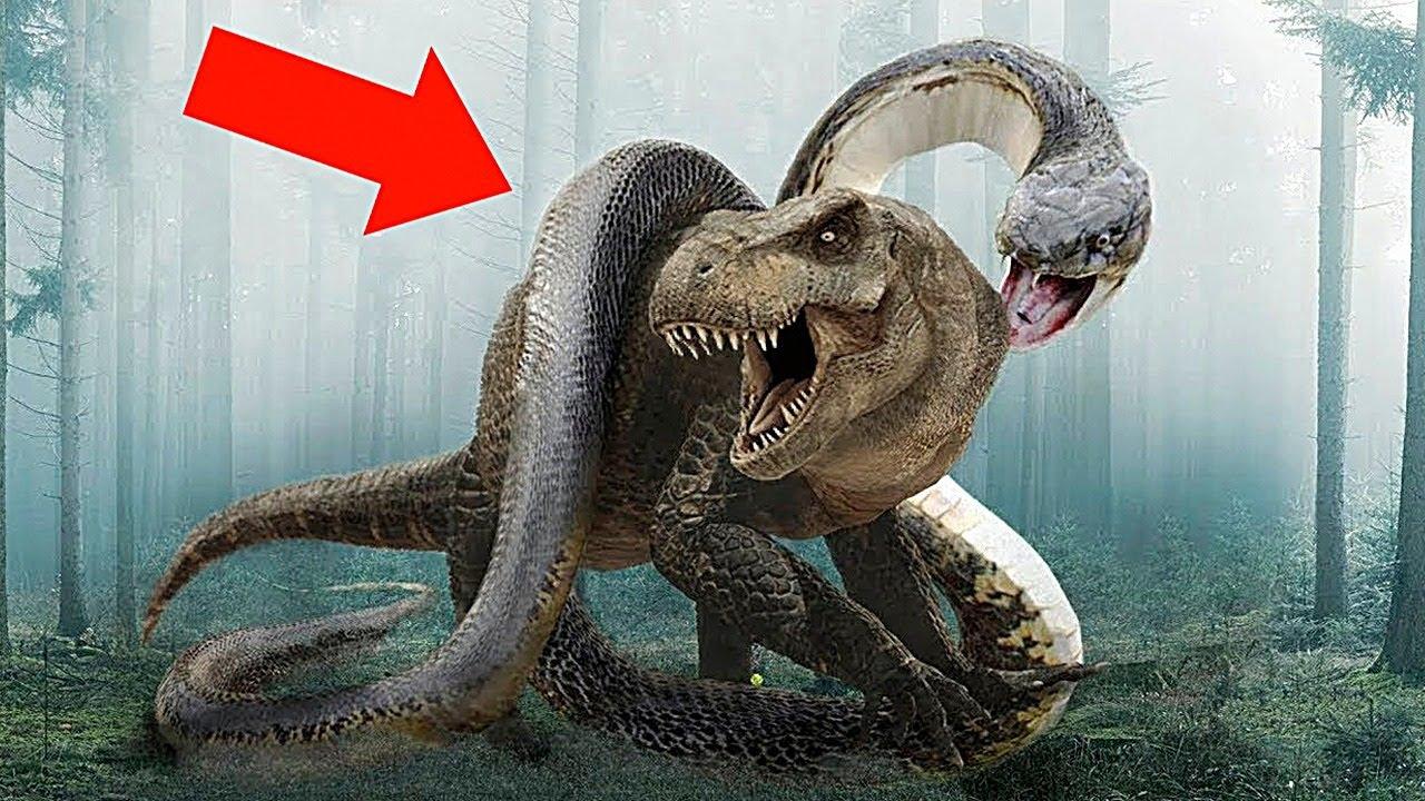 10 Змей Гигантов, Которые Были Намного Страшнее Динозавров