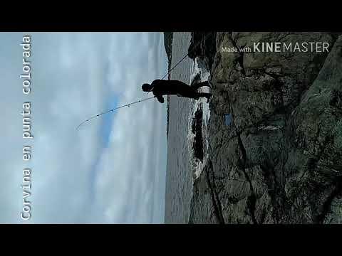Pesca de corvina En Punta Colorada Uruguay🐟